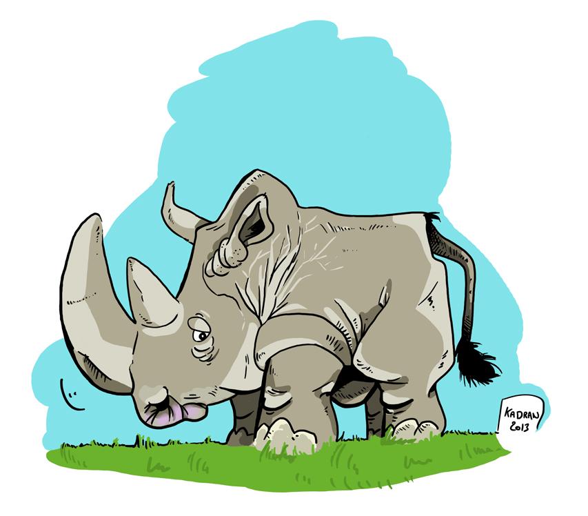 rhino-solo