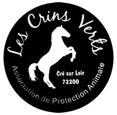 logo-crinvert6MINI